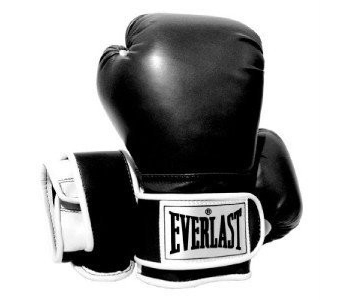 EVERLAST ADVANCED TRAINING GLOVES