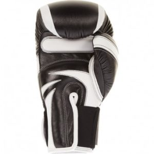Venum Absolute 2.0 Boxing gloves1