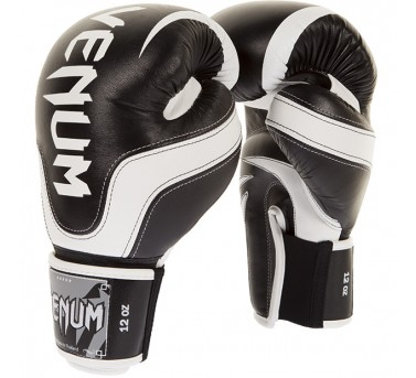 Venum Absolute 2.0 Boxing gloves2