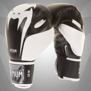 Venum Giant 2.0 Boxing Gloves